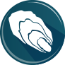 icon Oyster